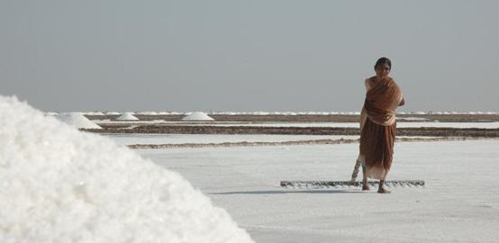 salt-fields